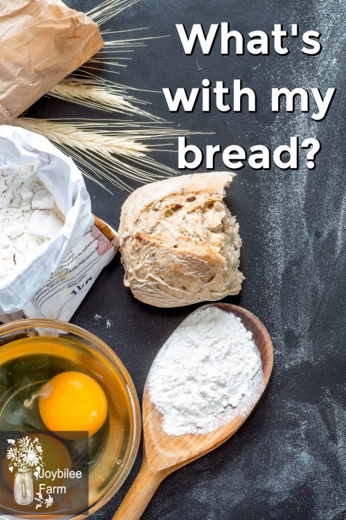 ingredients for bread