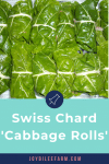 Gorgeous green Swiss chard stuffed rolls