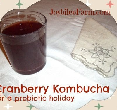 Cranberry Kombucha for a probiotic Holiday