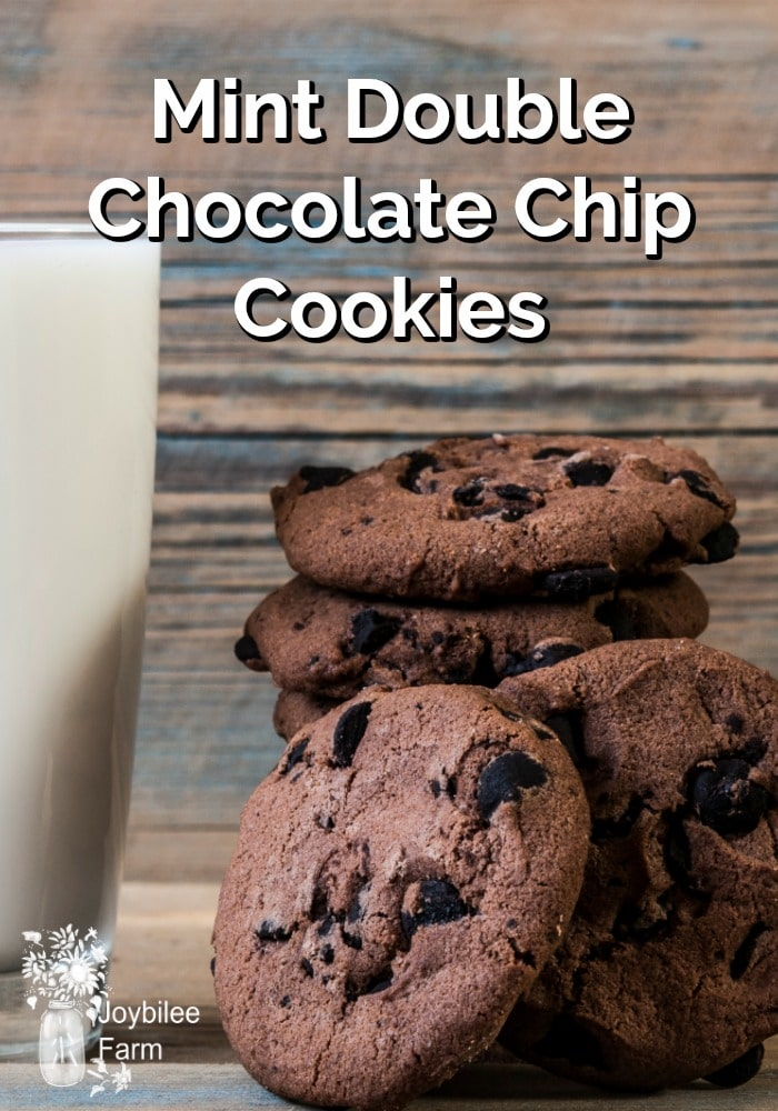 A stack of double chocolate chip cookies and a glass of milk