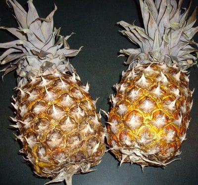 How to dry pineapple for your homemade trail mix
