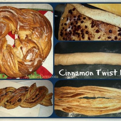 Cinnamon Twist Bread for Breakfast. Yes, please.