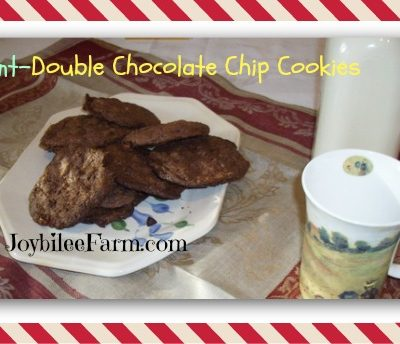 Mint Double Chocolate Chip Cookies
