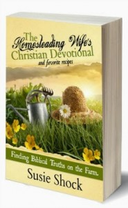 Book Bundle Giveaway for the Homestead Wife