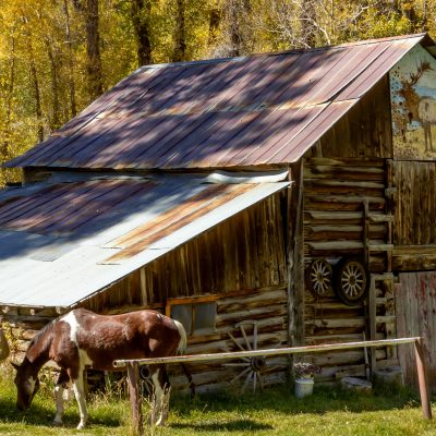 Laying the financial foundation for your homestead