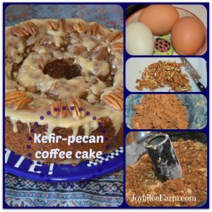 Kefir Pecan Streusel Coffee Cake and collage of ingredients - eggs, pecans, flour.
