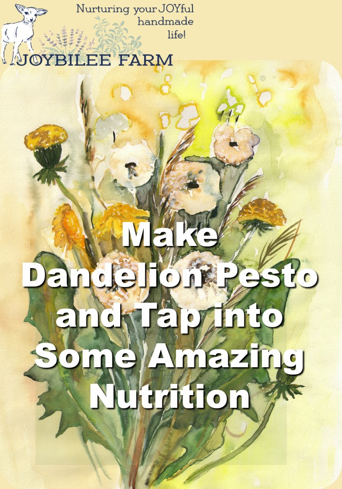 Dandelion pesto lets you tap into some amazing nutrition that full of flavonoids and antioxidants.