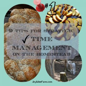 9 tips for strategic time management on the homestead