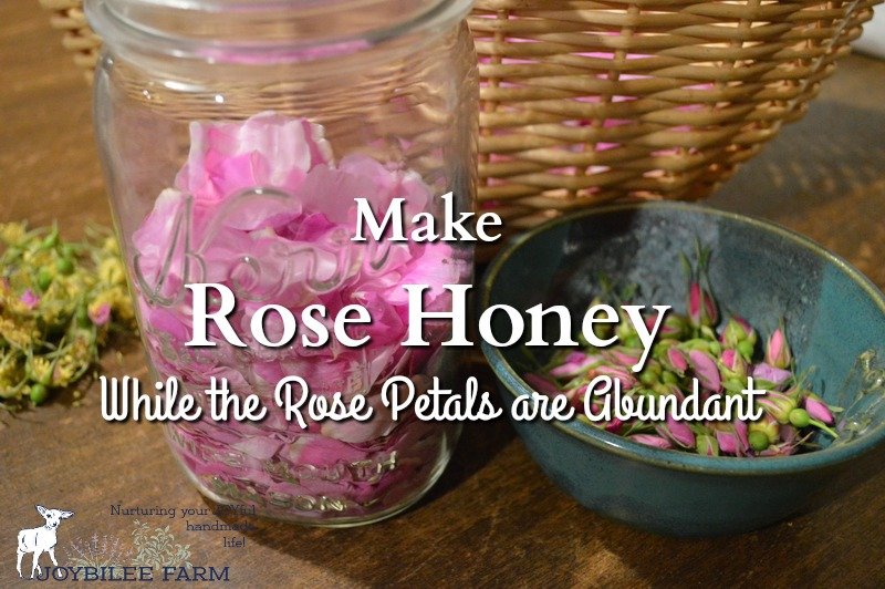 Make rose honey while the roses are abundant