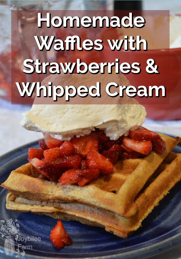 Waffles with strawberries and whipped cream on top