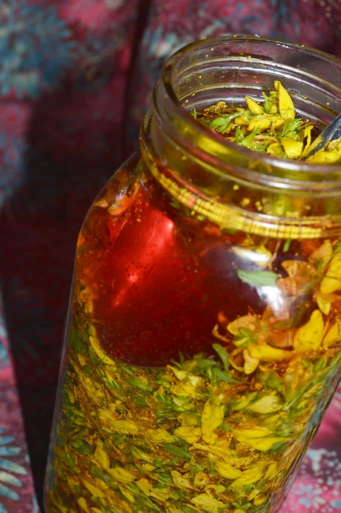 A bottle of St Johns wort tincture with yellow blooms and red liquid