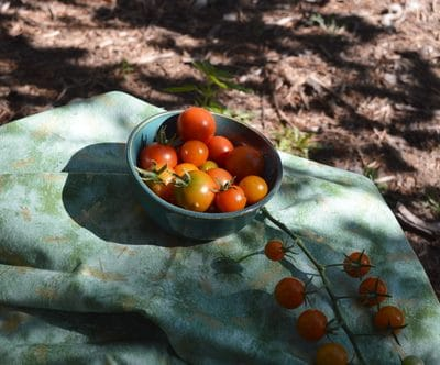 The Easy Way to Preserve Cherry Tomatoes