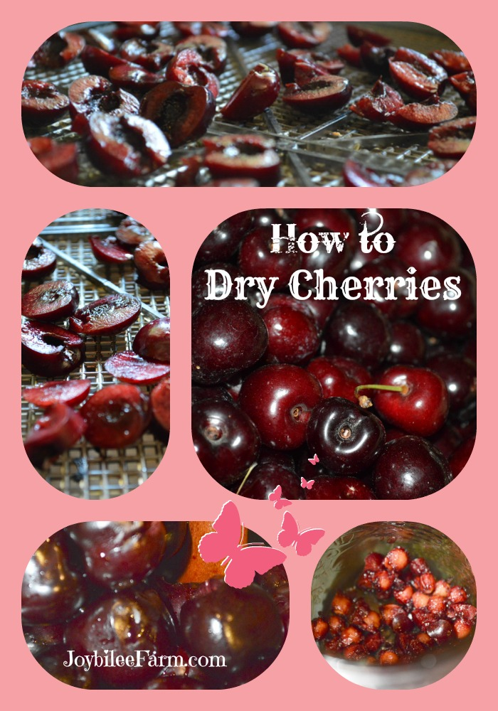 Photo collage of cherries - fresh, sliced and dehydrated