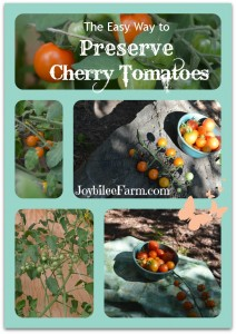 Photo collage of cherry tomatoes