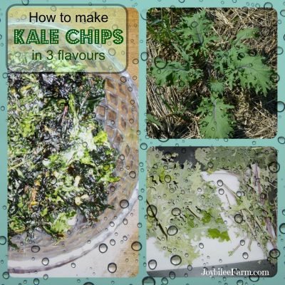 How to make Kale chips in 3 flavours