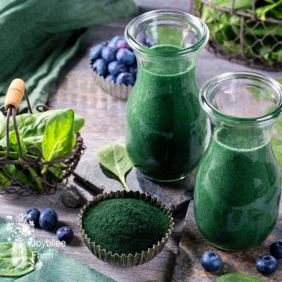 DIY Greens Supplement Powder for Smoothies