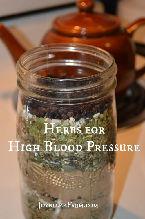 Herbs for High Blood Pressure -- Joybilee Farm