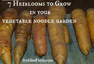 7 Heirlooms to grow in your Vegetable Noodle Garden - Joybilee Farm