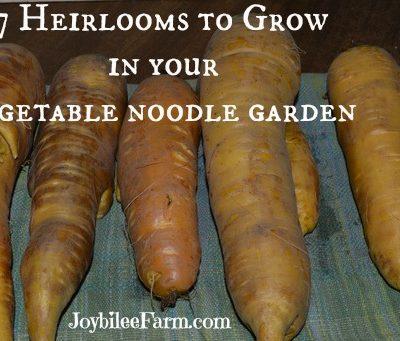 7 Heirlooms to grow in your vegetable noodles garden
