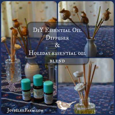 DiY Essential Oil Diffuser and a Holiday essential oil blend