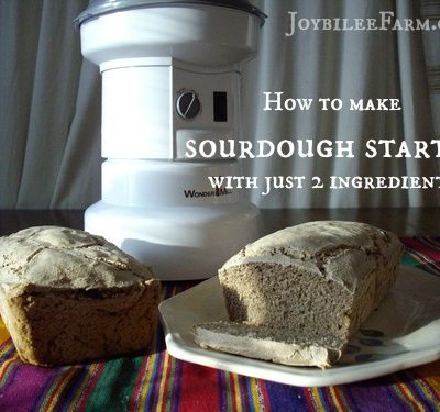 How to Make Sourdough Starter With Just 2 Ingredients