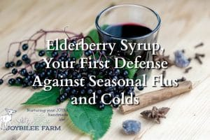 Elderberry Syrup, Your First Defense Against Seasonal Flus and Colds