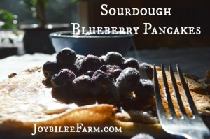 Hearty Sourdough Blueberry Pancakes