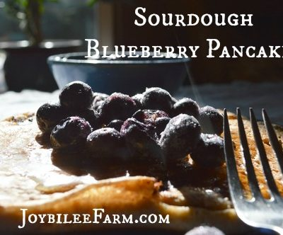 Hearty Sourdough Blueberry Pancakes