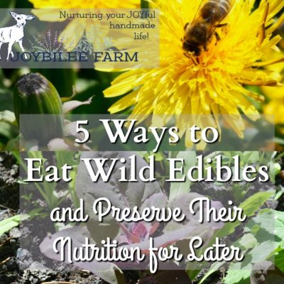 5 Ways to Eat Wild Edibles and Preserve Their Nutrition For Later