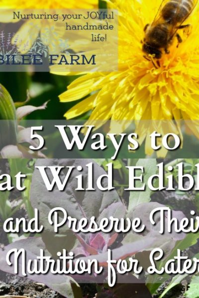 Wild edibles are survivors. Weeds grow deeply into the soil, breaking up hard pan and drawing up vitamins and minerals into their leaves, and flowers. You can tap into those minerals and vitamins while you are tending your garden this summer. Don't waste wild edibles. Eat them or preserve them for winter. Here's 5 ways to preserve wild edibles so that you can benefit from their vitamins, protein, and minerals. They are free and abundant all around you.