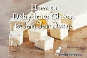 How to dehydrate cheese for long term storage.