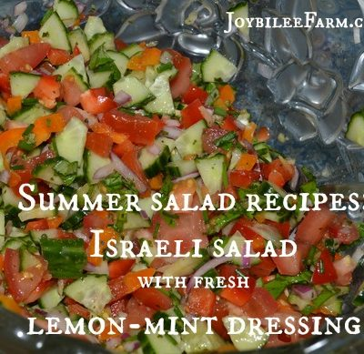 Summer salad recipes: Israeli salad recipe with fresh lemon-mint dressing