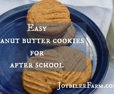Easy Peanut butter cookies for after-school