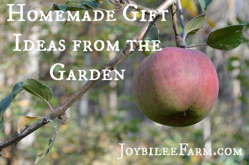 Apple Pie Chai Jelly and Homemade Gift Ideas from your Garden – Joybilee Farm
