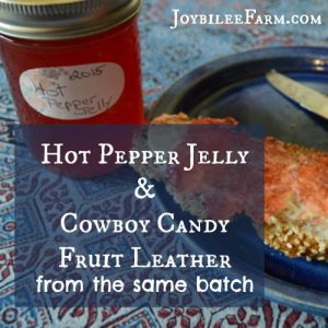 Hot Pepper Jelly and Cowboy Candy Fruit Leather from the same batch