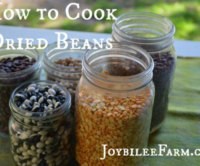How to cook dried beans, when you've only eaten canned beans