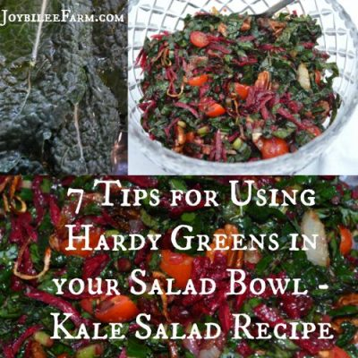 7 Tips for Using Hardy Greens in Your Salad Bowl – Kale Salad Recipe