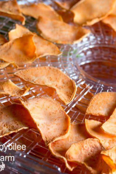 sweet potato chips dehydrating