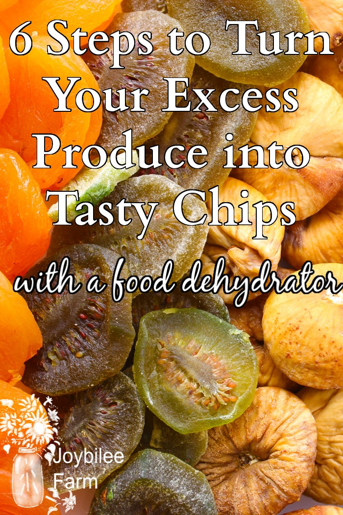 various dehydrated fruits
