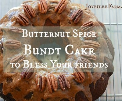 Butternut Spice Bundt Cake to Bless Your friends