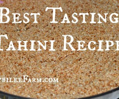 The Best Tasting Tahini Recipe