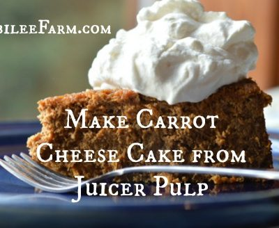 Make Carrot Cheese Cake from Juicer Pulp