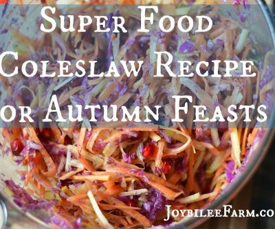 Super Food Coleslaw Recipe for Autumn Feasts