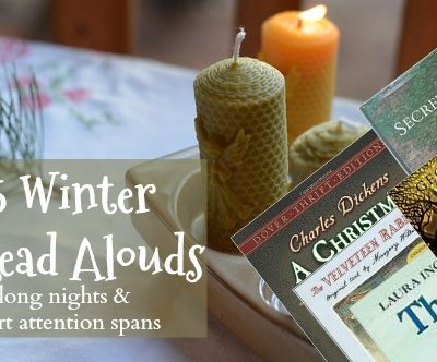 25 Winter Read Aloud's for Long Nights and Short Attention Spans