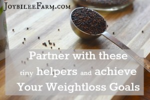 Partner with Microbes and Achieve Your Weightloss goals with these 5 tips