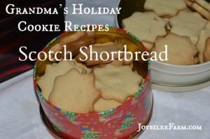 Grandma's Holiday Cookie Recipes – Scotch Shortbread