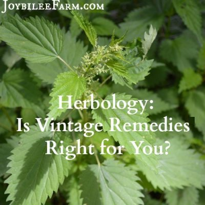 Is Vintage Remedies Right for You? Review of Vintage Remedies Classes