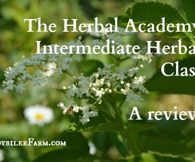 "Herbology: The Herbal Academy – ""Intermediate Herbal Class"""