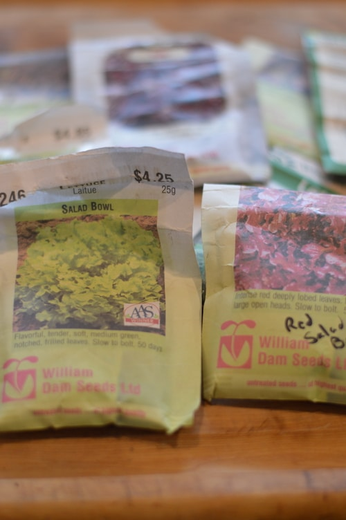 lettuce seed packages, planning the planting of a mesculin mix hugulculture bed
