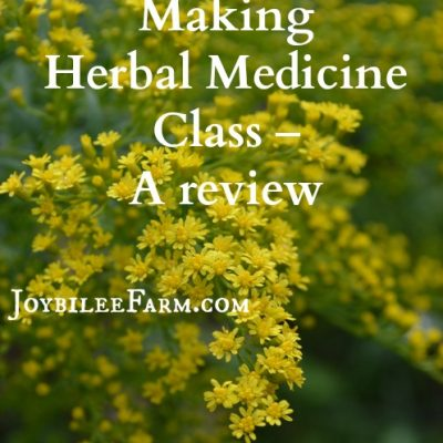 Making Herbal Medicine Class – A review
